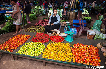 Laos Shopping Tips