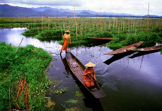 Inle Lake - Ruins Of Indein  & Floating Gardens - Yangon