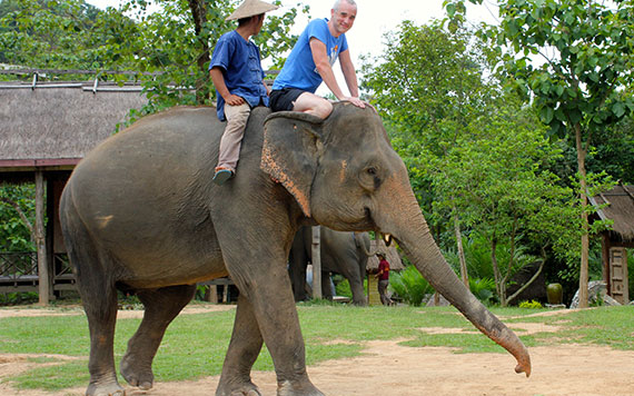 Luang Prabang – Elephant Riding - Full Day Itinerary