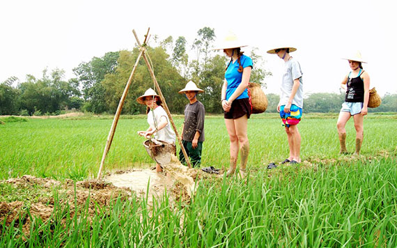 Real Experience To Become A Farmer At Vietnam Countryside